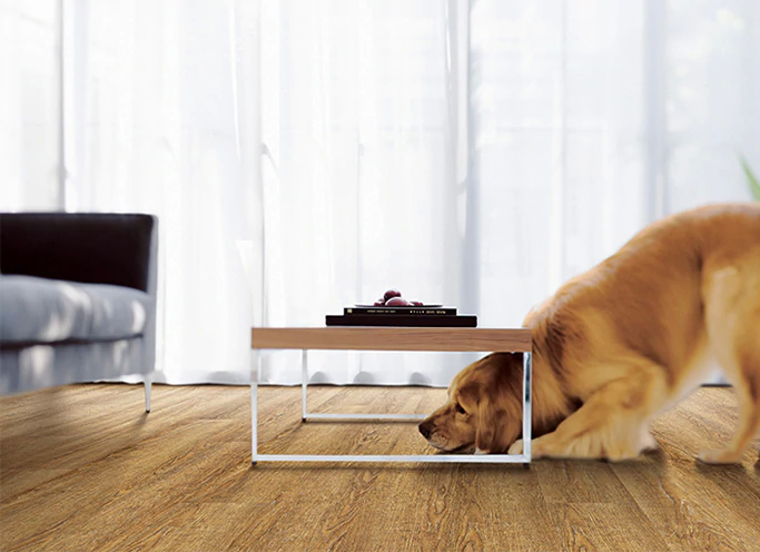 dog on COREtec vinyl flooring in living room
