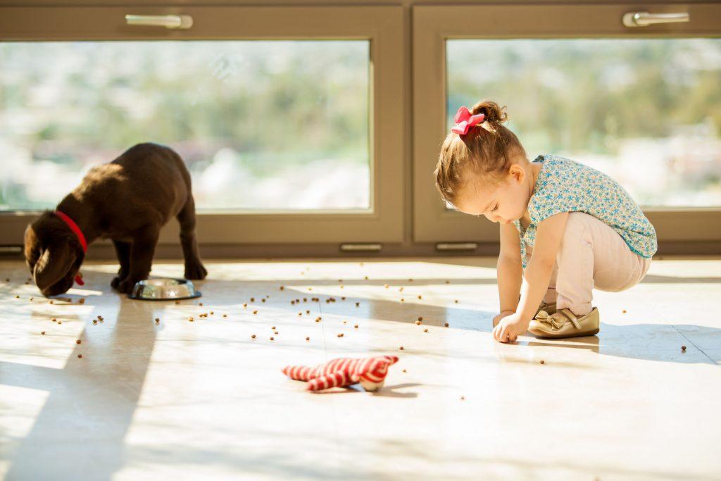 child and dog on laminate flooring