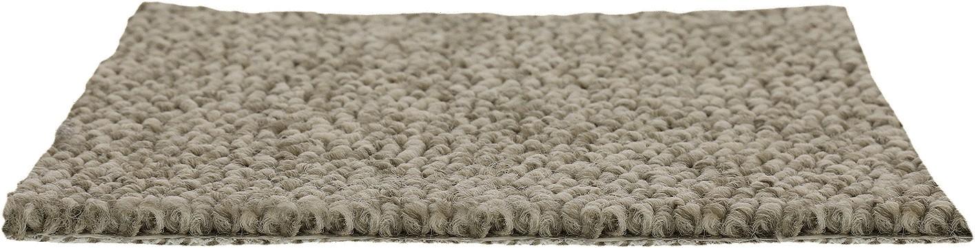 loop carpet | Dolphin Carpet & Tile