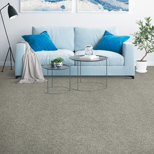 placid reflection carpet | Dolphin Carpet & Tile