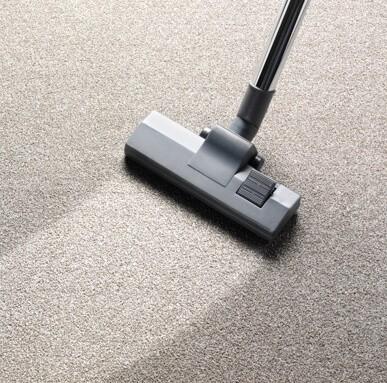 carpet maintenance | Dolphin Carpet & Tile