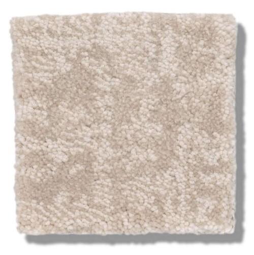 Beige Carpet | Dolphin Carpet & Tile