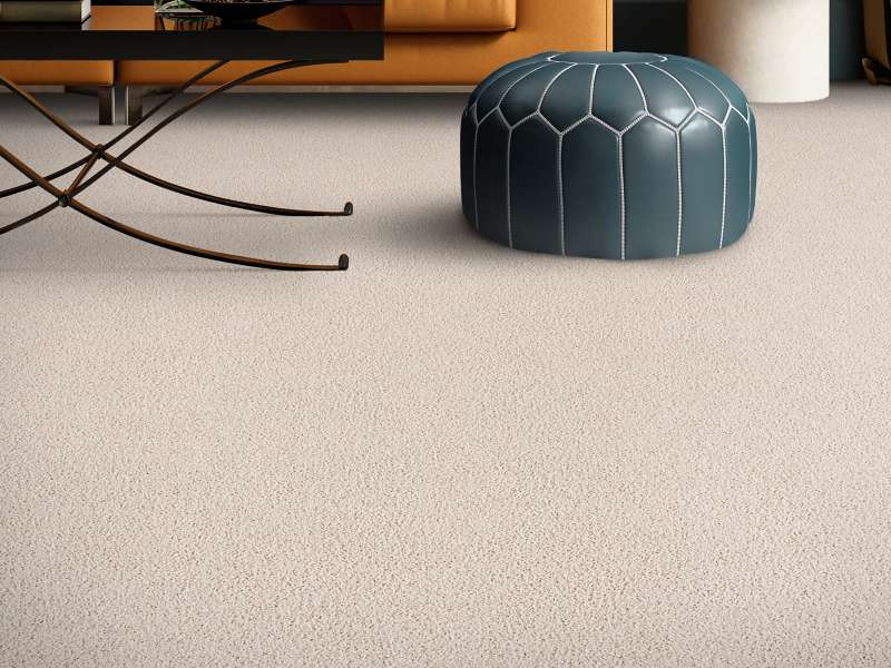 Casual carpet | Dolphin Carpet & Tile