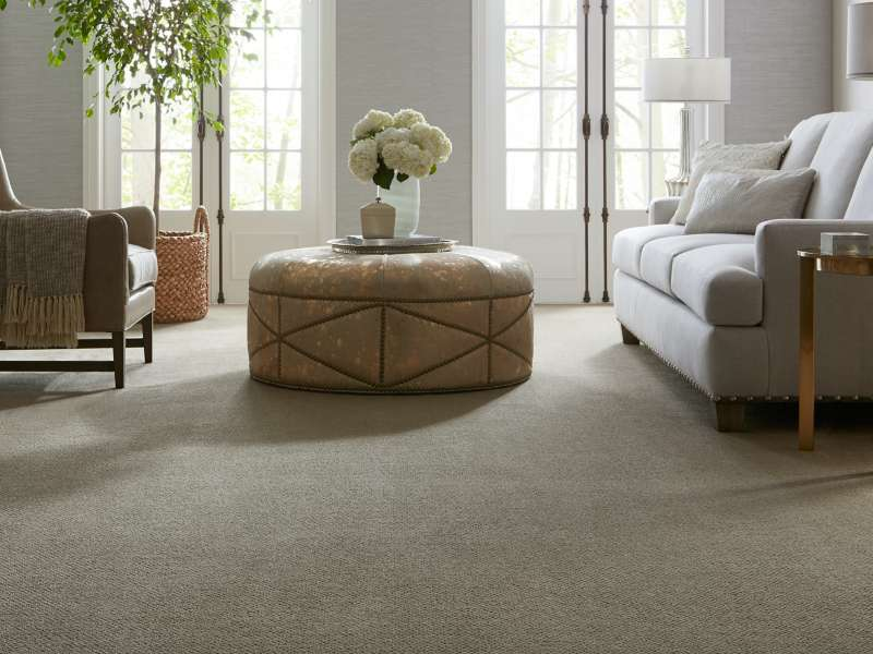 Casual beauty of carpet | Dolphin Carpet & Tile