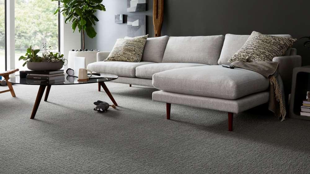 karastan smartstrand | Dolphin Carpet & Tile