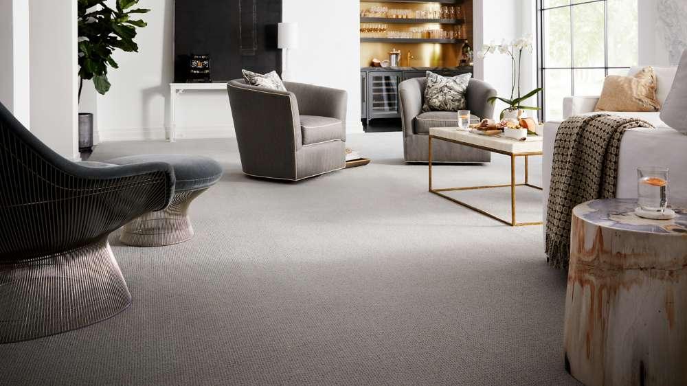 karastan nylon | Dolphin Carpet & Tile