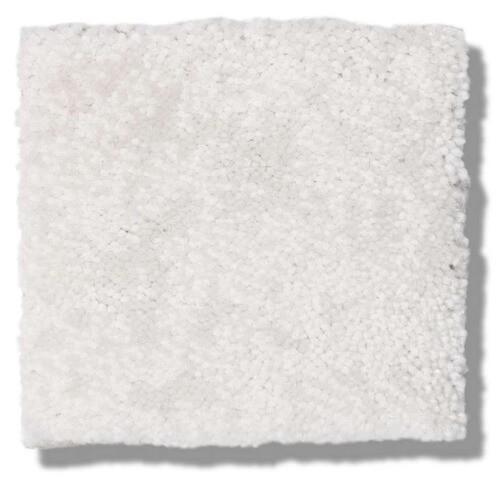white carpet   Dolphin Carpet & Tile