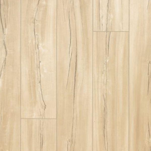 Thatcher Ellsworth | Dolphin Carpet & Tile