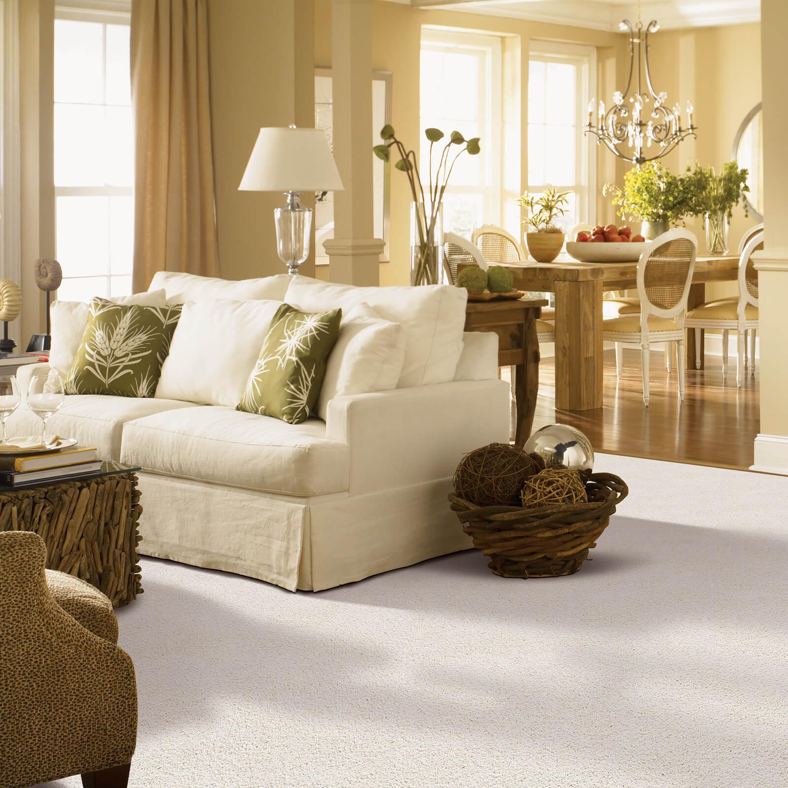 Living room carpet | Dolphin Carpet & Tile