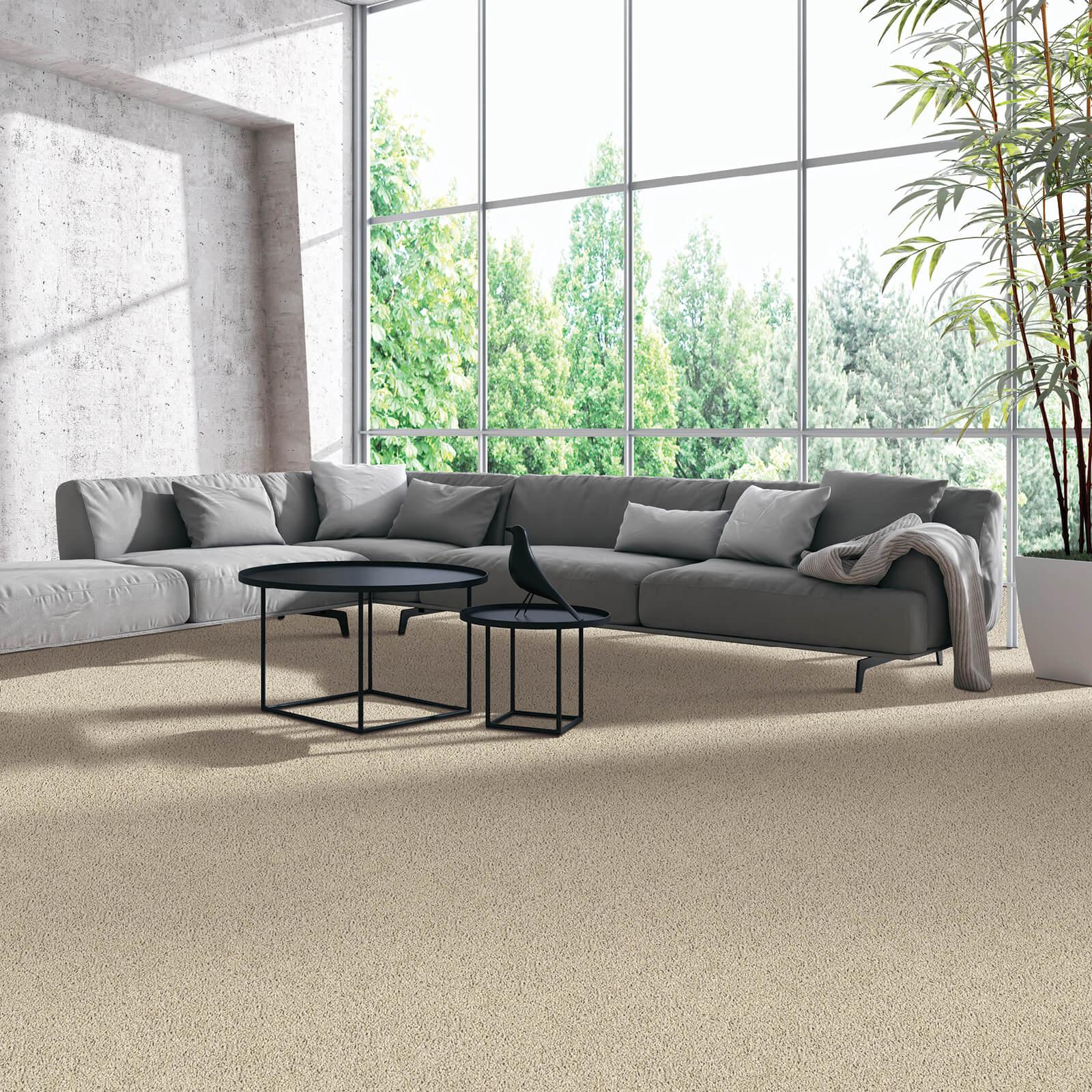 Modern living room flooring | Dolphin Carpet & Tile