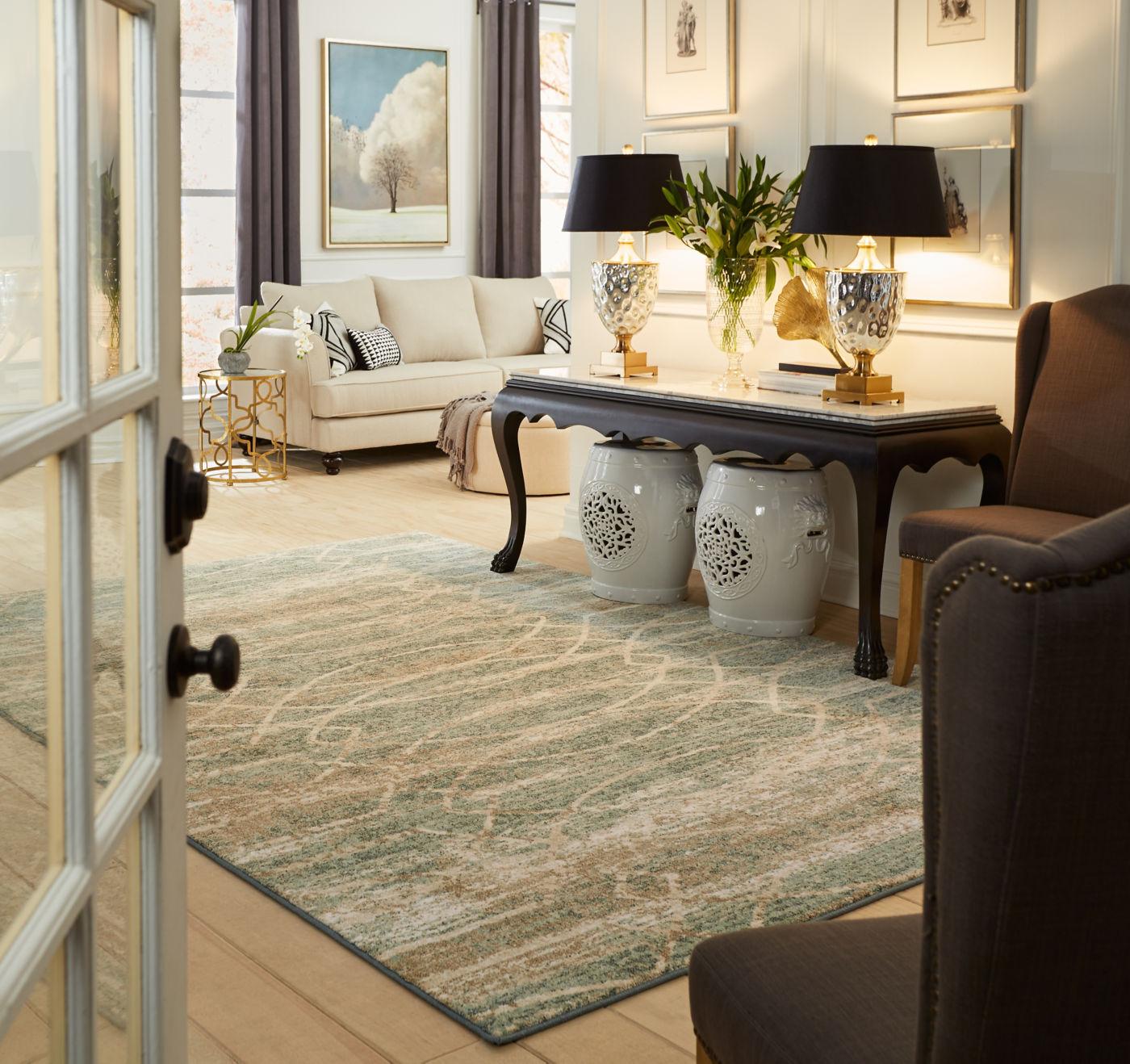 Karastan area rug | Dolphin Carpet & Tile