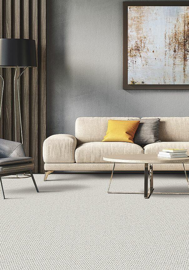 karastan loop berber carpet   Dolphin Carpet & Tile