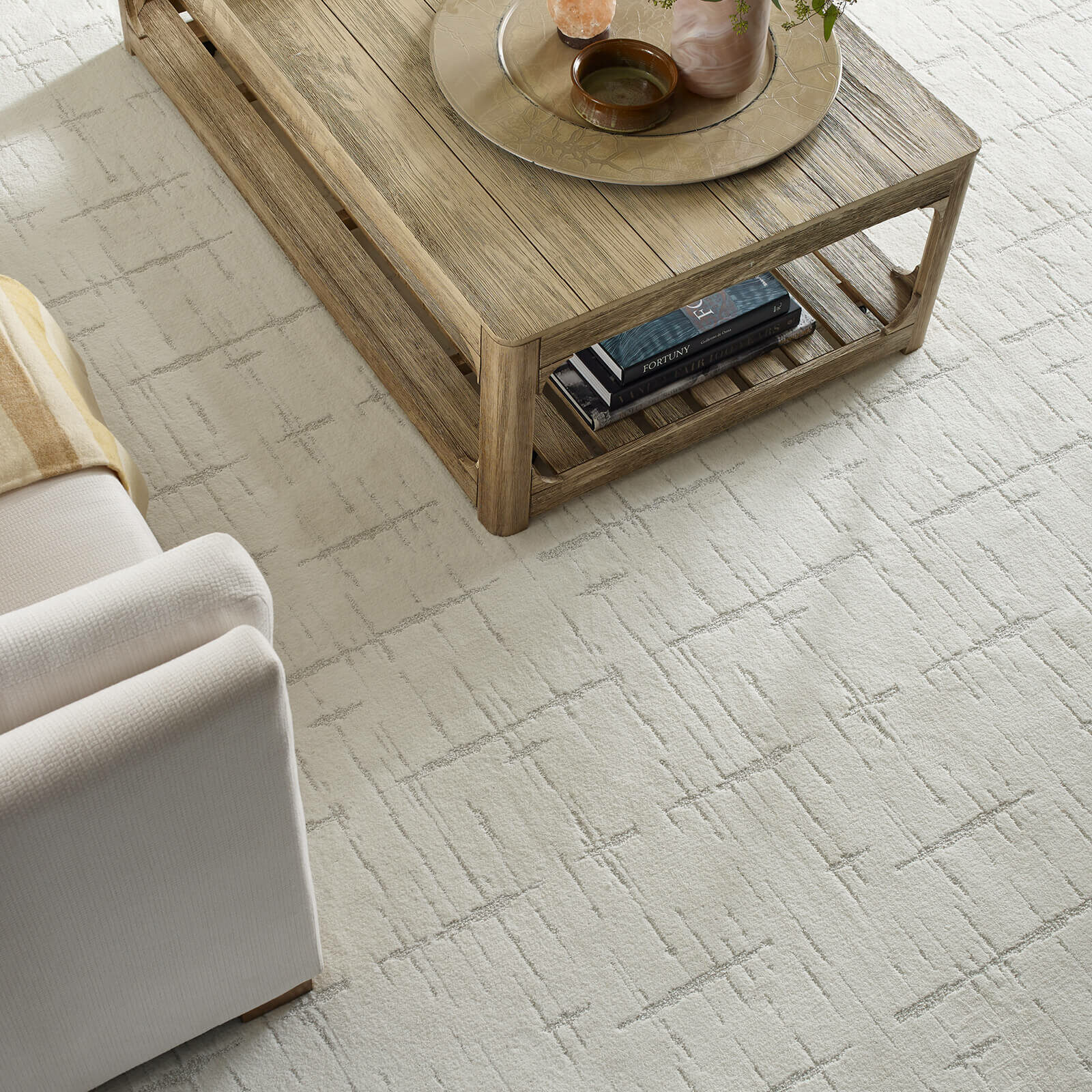 shaw carpet | Dolphin Carpet & Tile