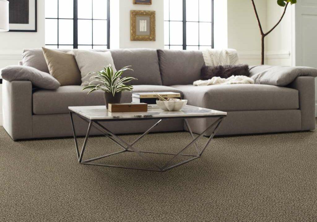 shaw bereber | Dolphin Carpet & Tile