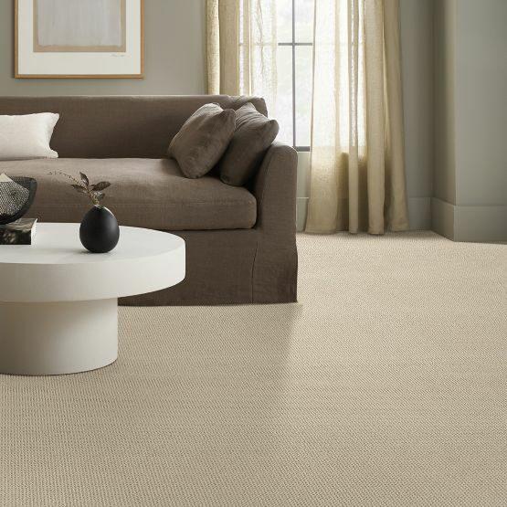 anderson tuftex | Dolphin Carpet & Tile
