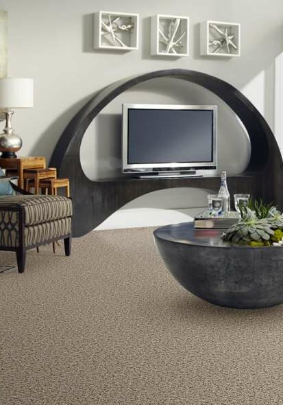 Shaw Sophisticated Space carpet | Dolphin Carpet & Tile