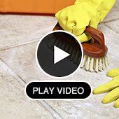 Video | Dolphin Carpet & Tile